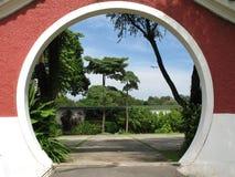 peeking garde oriental Стоковое Изображение