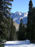 Peeking Peaks. Snowy peaks at high altitude in the Colorado Rocky Mountains royalty free stock image