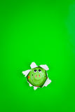 Peeking Piggy Bank Royalty Free Stock Photography