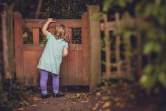Peeking through the wooden gates Stock Photo