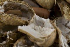 Peel av amerikanska jordnötter royaltyfri bild