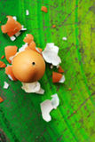 Peel eggs. Royalty Free Stock Images