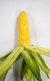 Peel fruit corn Stock Photo