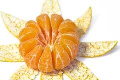 Peel of Mandarin Orange. Royalty Free Stock Image