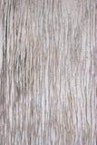 Peel off Painted Board Texture. Peel off old white painted board texture Stock Photos