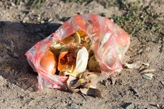 Peel onions in nature as garbage Royalty Free Stock Photography