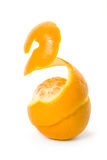 Peel of an orange Stock Photography
