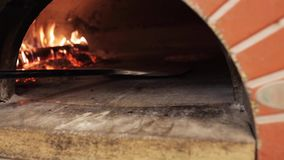 Peel placing pizza baking into oven at pizzeria stock video footage