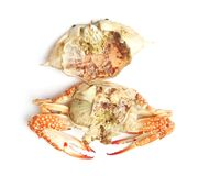 Peel steamed blue crab Stock Photo