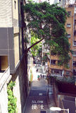 Peel street of Mid Levels at Hong Kong Royalty Free Stock Photography