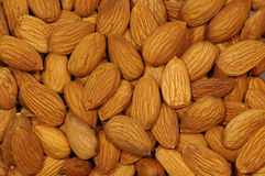Peeled Almond. Closeup. Stock Photo