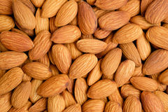 Peeled almond nuts Royalty Free Stock Image