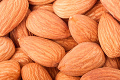Peeled almonds as a background close-up macro Stock Images