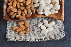 Peeled almonds, blanched Almond. Stock Images