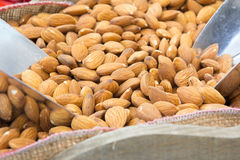 Peeled almonds Royalty Free Stock Photography