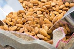 Peeled almonds Royalty Free Stock Image