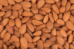 Peeled almonds closeup. For vegetarians. Stock Photo