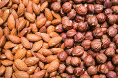 Peeled almonds and hazelnuts background Royalty Free Stock Image