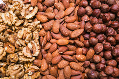 Peeled almonds, hazelnuts and walnuts kernel background Royalty Free Stock Image