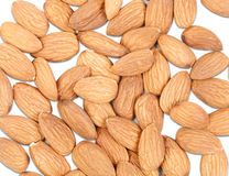 Peeled almonds Stock Photography
