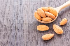 Peeled almonds in wooden spoon on wood background. Close up peeled almonds in wooden spoon on wood background. Copy space for design Stock Image