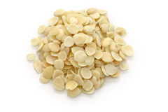 Peeled apricot kernels, traditional chinese herbal royalty free stock image