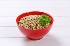 Peeled brown lentils Royalty Free Stock Image