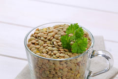 Peeled brown lentils Royalty Free Stock Photography