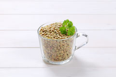 Peeled brown lentils Stock Images
