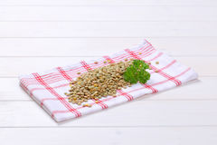 Peeled brown lentils Royalty Free Stock Photo