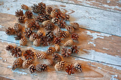 Peeled cedar nuts in a jar on the old wooden table against the background of cones. Stock Image