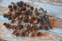 Peeled cedar nuts in a jar on the old wooden table against the background of cones. Stock Photos
