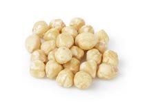 Peeled and cleaned hazelnut kernels Stock Image