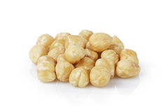 Peeled and cleaned hazelnut kernels Stock Photography
