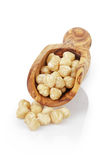 Peeled and cleaned hazelnut kernels in wood scoop Royalty Free Stock Image