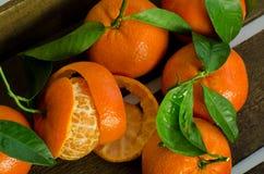 Peeled clementine Stock Photos