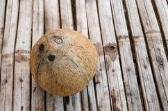 Peeled coconut Stock Photos