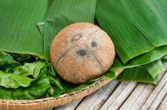Peeled coconut Royalty Free Stock Photo