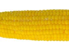 Peeled corn on a light background