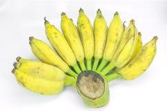 Peeled cultivated banana on white background. Royalty Free Stock Image