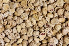 Peeled dried chestnuts Stock Photo