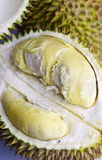 Peeled Durian Closeup II Royalty Free Stock Images