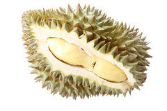 Peeled durian isolated. Royalty Free Stock Image