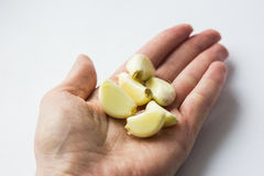 Peeled garlic cloves in the palm on a light background stock image