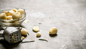 Peeled garlic in a glass bowl and press garlic. Royalty Free Stock Photo