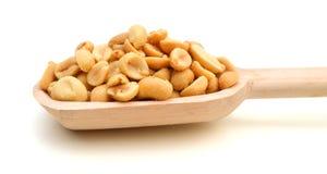 Peeled gesalzene Erdnüsse Stockbilder
