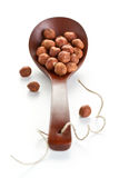 Peeled hazelnut in a spoon Royalty Free Stock Photography