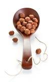 Peeled hazelnut in a spoon Royalty Free Stock Photography