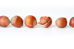 Peeled hazelnut among unpeeled, isolated on white Royalty Free Stock Photos