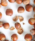 Peeled hazelnut among unpeeled, isolated on white Royalty Free Stock Images